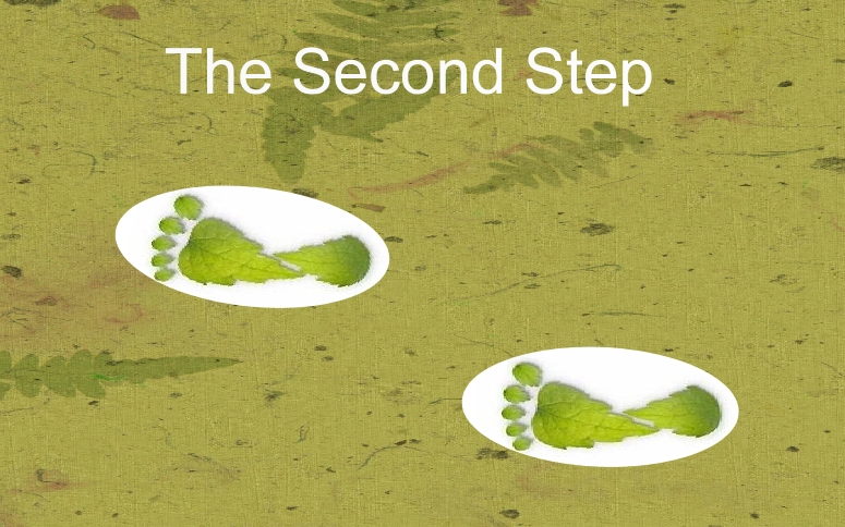 22caf51b6c0ce8 Everyone has heard it said that a journey of a 1000 steps commences with  the first step. It is important and takes courage to take that first step  and books ...